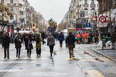 Plaisirs d'hivers (Bruxelles / 2017)