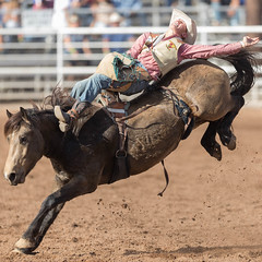 Brawley Cattle Call Rodeo 2017