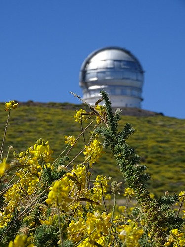 """La Palma Telescop • <a style=""""font-size:0.8em;"""" href=""""http://www.flickr.com/photos/160223425@N04/37968175525/"""" target=""""_blank"""">View on Flickr</a>"""