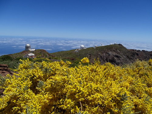 """La Palma Telescop • <a style=""""font-size:0.8em;"""" href=""""http://www.flickr.com/photos/160223425@N04/37968246275/"""" target=""""_blank"""">View on Flickr</a>"""