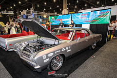 Sema Day three -95