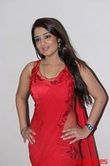 Kannada Times_Nikita Thukral_096