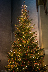 "Weihnachten 2017 Johannesdom Nabburg • <a style=""font-size:0.8em;"" href=""http://www.flickr.com/photos/58574596@N06/38428095825/"" target=""_blank"">View on Flickr</a>"