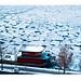 Isflak / ice floe