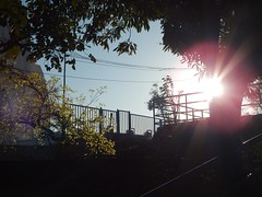 Sunrise in Omkar Hills Photography By Chinmaya M (184)