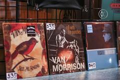 Van-Morrison-Wiltern-Micah-Wright_07
