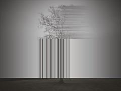 death, like growth (poem)