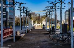 Architektur in Düsseldorf 201