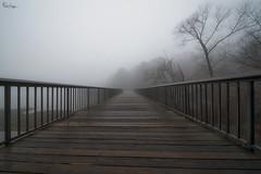 Shelley Lake Bridge