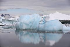A trip to antarctica