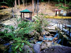 Jeram Toi 86, 71600 Kuala Klawang, Negeri Sembilan 013-670 2168 https://maps.google.com/?cid=11806334247236530384&hl=en&gl=gb #waterfall #trip #travel #holiday #traveling #tree #Asian #Malaysia #negerisembilan #holidayMalaysia #travelMalaysia #nature #大自然