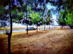 Pantai Klebang - Jalan Klebang Besar - http://4sq.com/93Bcwy #travel #holiday #beach #tree #Asian #Malaysia #Malacca #melaka #travelMalaysia #holidayMalaysia #旅行 #度假 #海滩 #树木 #亚洲 #马来西亚 #马六甲 #马来西亚度假 #马来西亚旅行 #pantai #boat #船 #trip