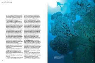 24---divesite_-madagascar-diving_003