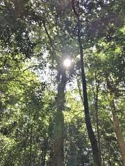 Rincon de la Vieja National Park, CR