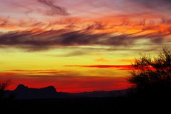 """Many-colored sunset • <a style=""""font-size:0.8em;"""" href=""""http://www.flickr.com/photos/11859165@N00/24925900737/"""" target=""""_blank"""">View on Flickr</a>"""