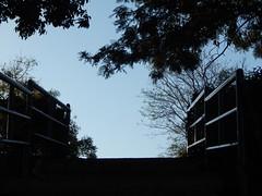 Sunrise in Omkar Hills Photography By Chinmaya M (181)
