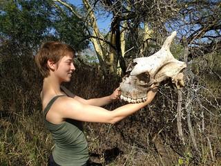 Umkhumbi intern Tyla Barnwell with giraffe skull