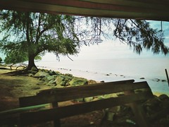 Pantai Remis - Jeram - http://4sq.com/q6BcrK #travel #holiday #beach #tree #nature #Asian #Malaysia #Selangor #PantaiRemis #travelMalaysia #holidayMalaysia #旅行 #度假 #海滩 #树木 #大自然 #亚洲 #马来西亚 #雪兰莪 #马来西亚度假 #马来西亚旅行 #天空 #sky