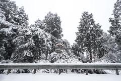 雪見晴 宜蘭太平山