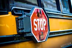 Thomas School Bus