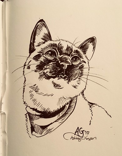 """Ink Drawings on sale! • <a style=""""font-size:0.8em;"""" href=""""http://www.flickr.com/photos/8497929@N02/24237229137/"""" target=""""_blank"""">View on Flickr</a>"""
