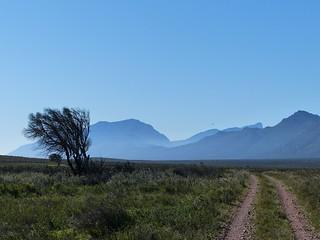 at Bartholomeus Klip, Western Cape