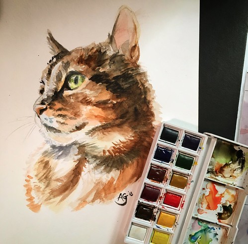 "Watercolour Portrait: Emmie the Cat • <a style=""font-size:0.8em;"" href=""http://www.flickr.com/photos/8497929@N02/26596149958/"" target=""_blank"">View on Flickr</a>"