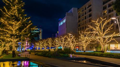 Tokyo Midtown Illumination / 東京中城