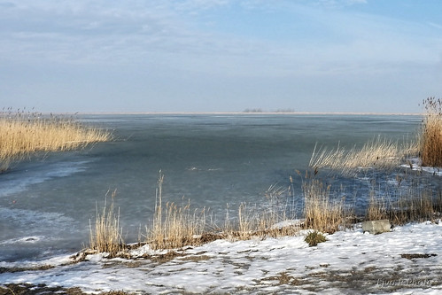 Melting Lake Spring/Olvadás  Tó Tavasz