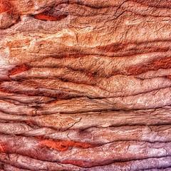 Petra's sandstone almost looks tasty 😄