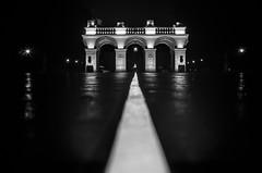 Warszawskie noce