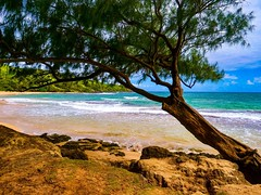 Kauai Beach in Hawaii, USA. Taken with Panasonic LUMIX DC-GH5 camera.