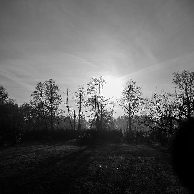 Morgengruß 1