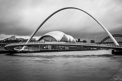 The Sage / Newcastle upon Tyne