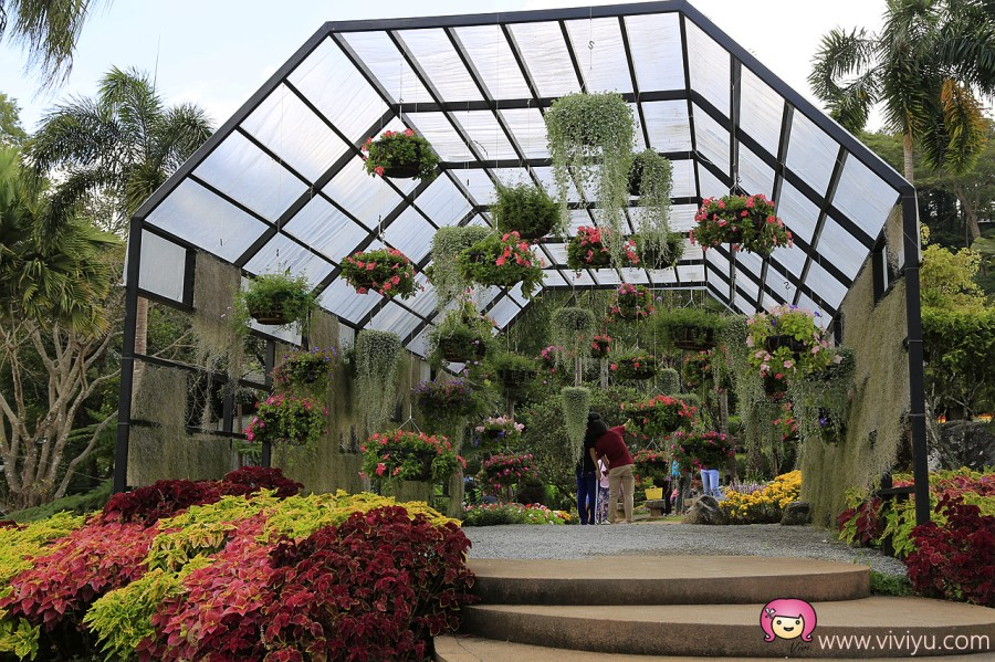 [清萊景點]清萊Doi Tung皇太后行宮花園│泰國小瑞士美稱.清萊除了廟也有美景旅遊點 @VIVIYU小世界