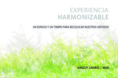 Experiencia Harmonizable