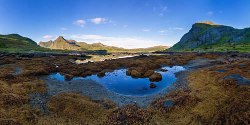 Lofoten Bay along E10
