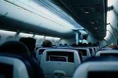 New Ektachrome E100 // Flight
