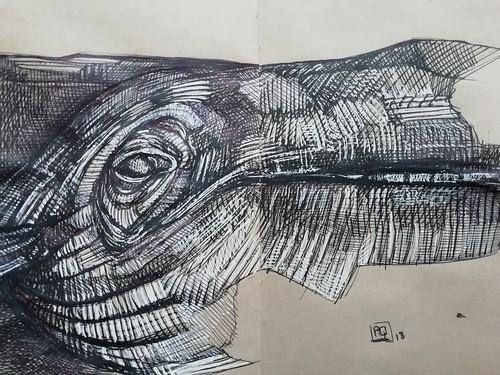 12_whale