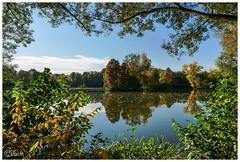 Herbstlicher Durchblick..