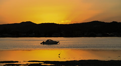 Sunset, St Hubert's Island, NSW, Australia