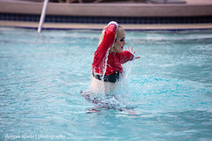 """Holiday Matsuri 2018 • <a style=""""font-size:0.8em;"""" href=""""http://www.flickr.com/photos/88079113@N04/46228114434/"""" target=""""_blank"""">View on Flickr</a>"""