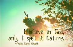 I believe in God, only I spell it Nature. -- Frank Lloyd Wright