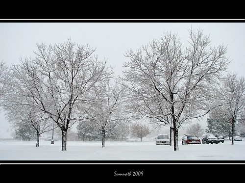 First major snowfall of the year 2009, at Centennial, CO by Somnath Mukherjee Photoghaphy