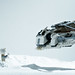 REJECTED FRAME: Early Morning on Hoth