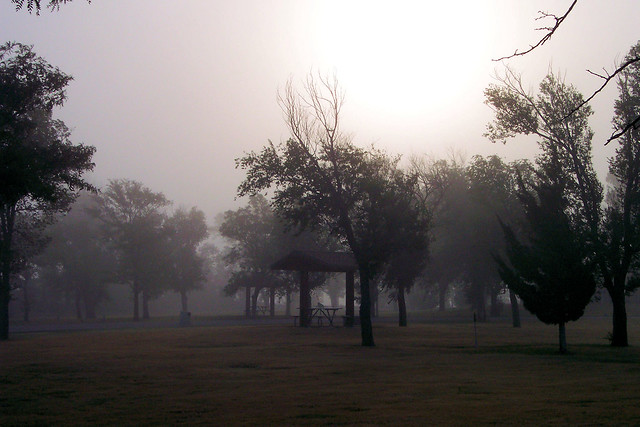 Morning fog at I70 rest area, western Kansas, August 22, 2004