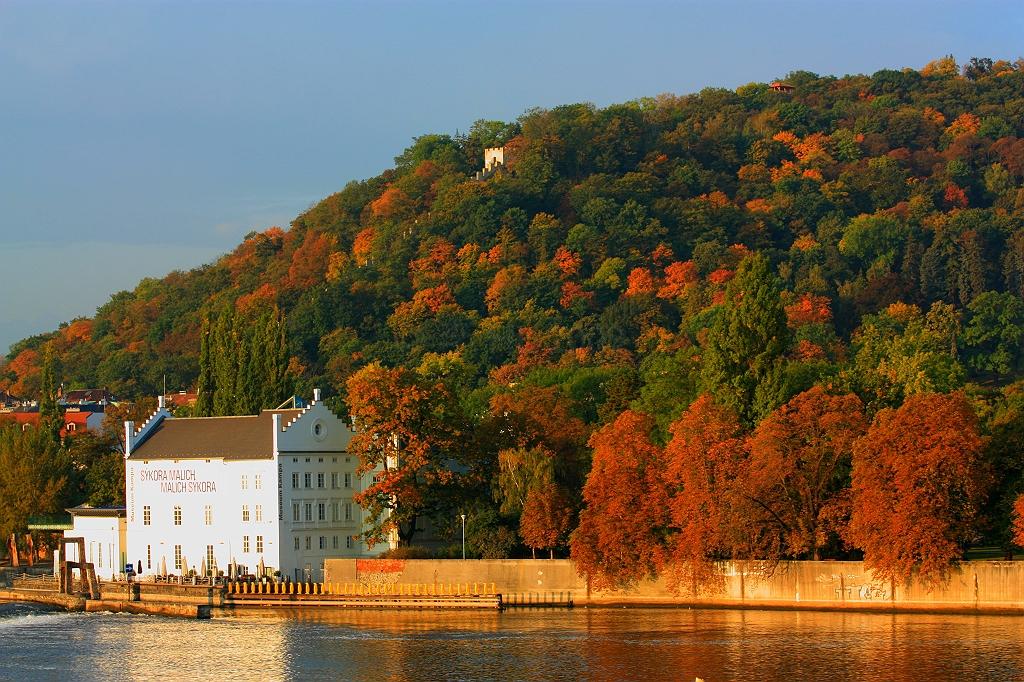 Dawn, autumn, Museum Kampa, Kampa, Petrin hill, Prague