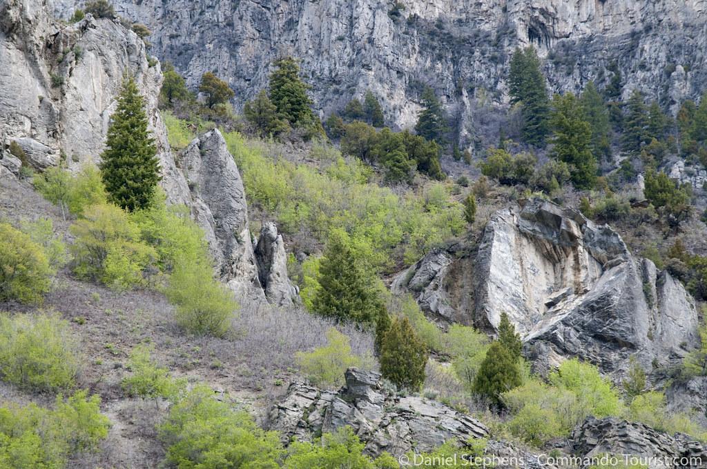 Ogden Canyon Wildwood Estates Utah Tripcarta