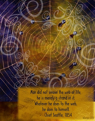 Chief Seattle : the Web of Life by deZengo