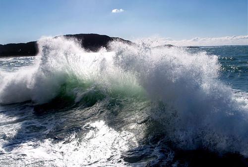 wave_hayama